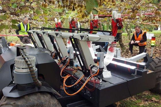 Робот сборщик фруктов