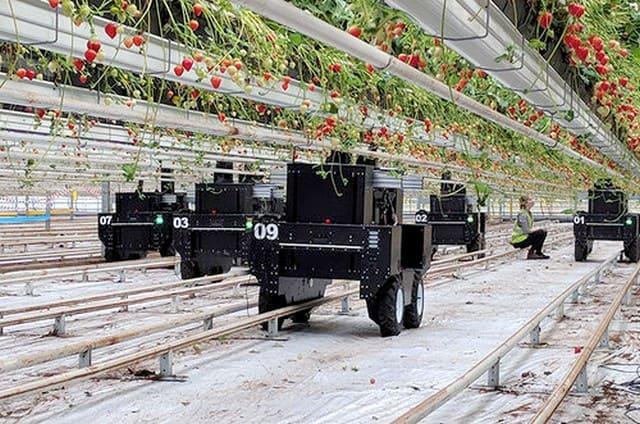 роботы для сбора урожая