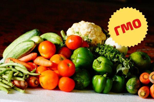 маркировка продуктов содержащих ГМО