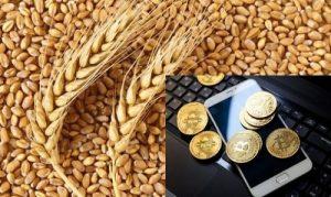 криптовалюта для сельского хозяйства