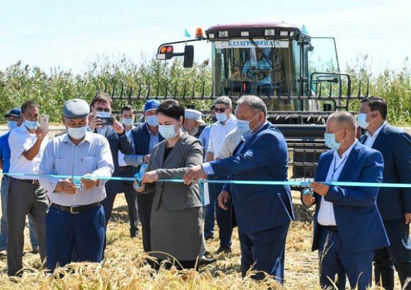 церемония сбора первого урожая