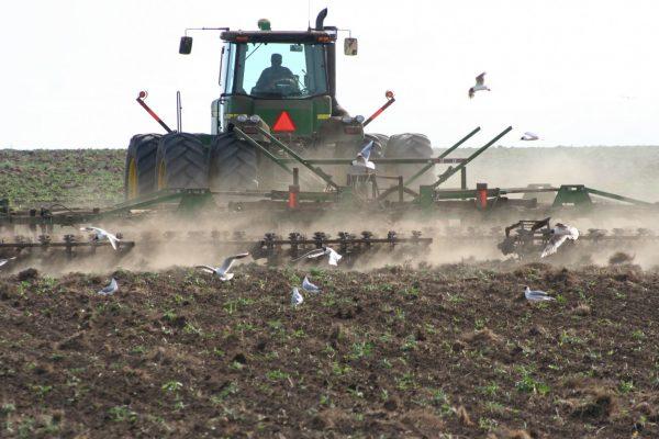 В Уральской СХОС посев планируется произвести на площади 4155 га