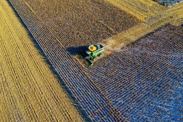 Диверсификация сельского хозяйства - главное условие конкуренции