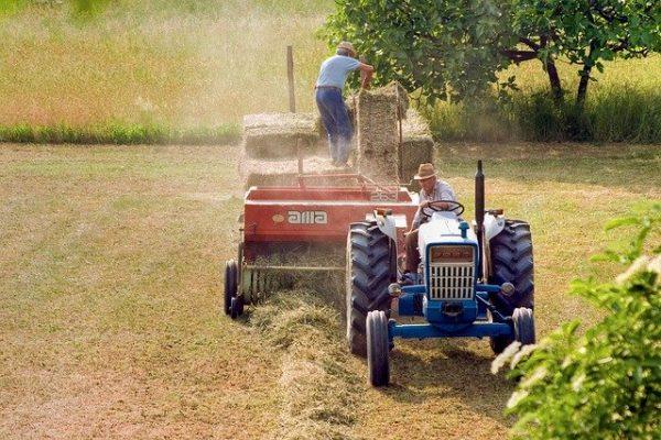 Новая технология снижает риск производственного травматизма в сельском хозяйстве