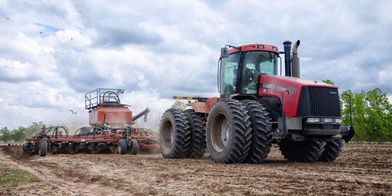 1,48 миллиона гектаров площадей засеют в Павлодарской области в этом году
