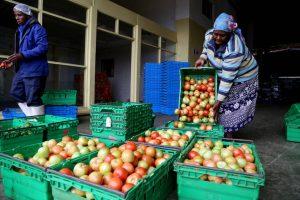 2021 объявлен годом овощей и фруктов