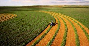 670 тысяч га сельхозземель в СКО