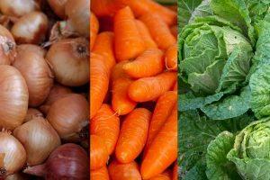 500 сертификатов для экспорта лука, моркови и капусты выдано в апреле