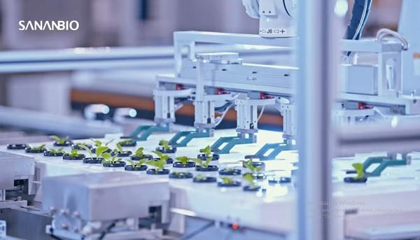 полностью роботизированная вертикальная ферма