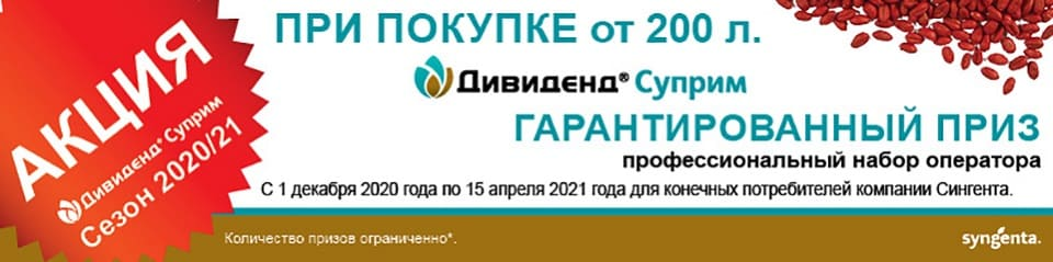 Syngenta Акция по ДС 960х240pix