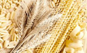 Потенциал экспорта зерновых оценен в 9,5 млн тонн