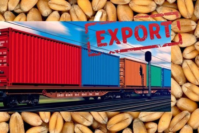 Экспорт зерновых