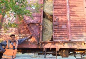 Карагандинцы отправляют сено в пострадавшим фермерам Мангистау