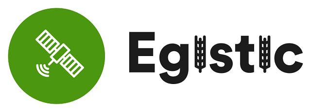логотип EGISTIC