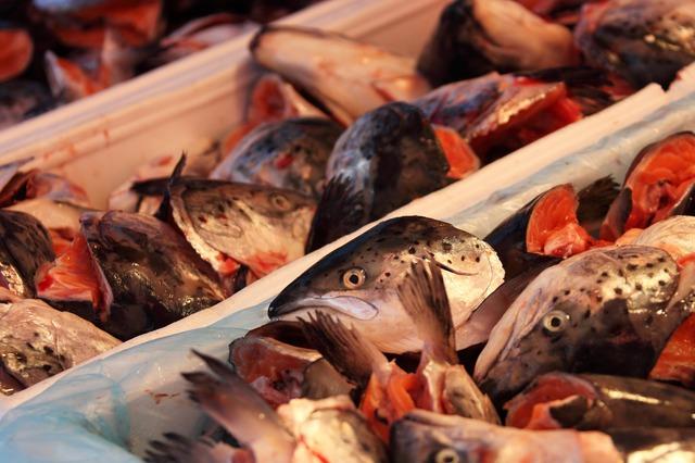 отходы рыбного производства