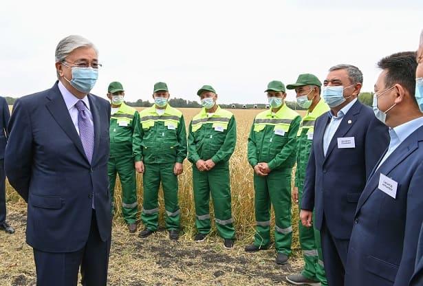 Президент посетил поля в Северо-Казахстанской области