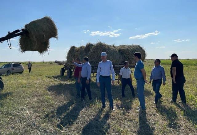 Рабочая группа Минсельхоза РК посетила сенокосные угодья