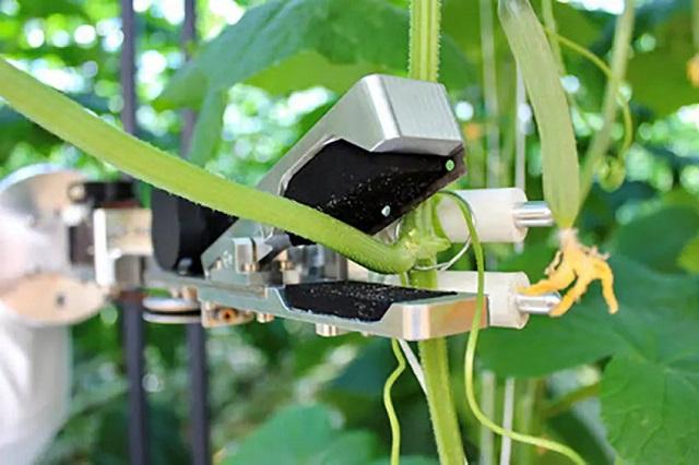робот-листорез CropTeq