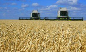 сельское хозяйство Казахстана