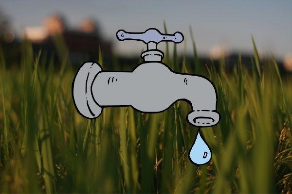 водоснабжение сельхозземель